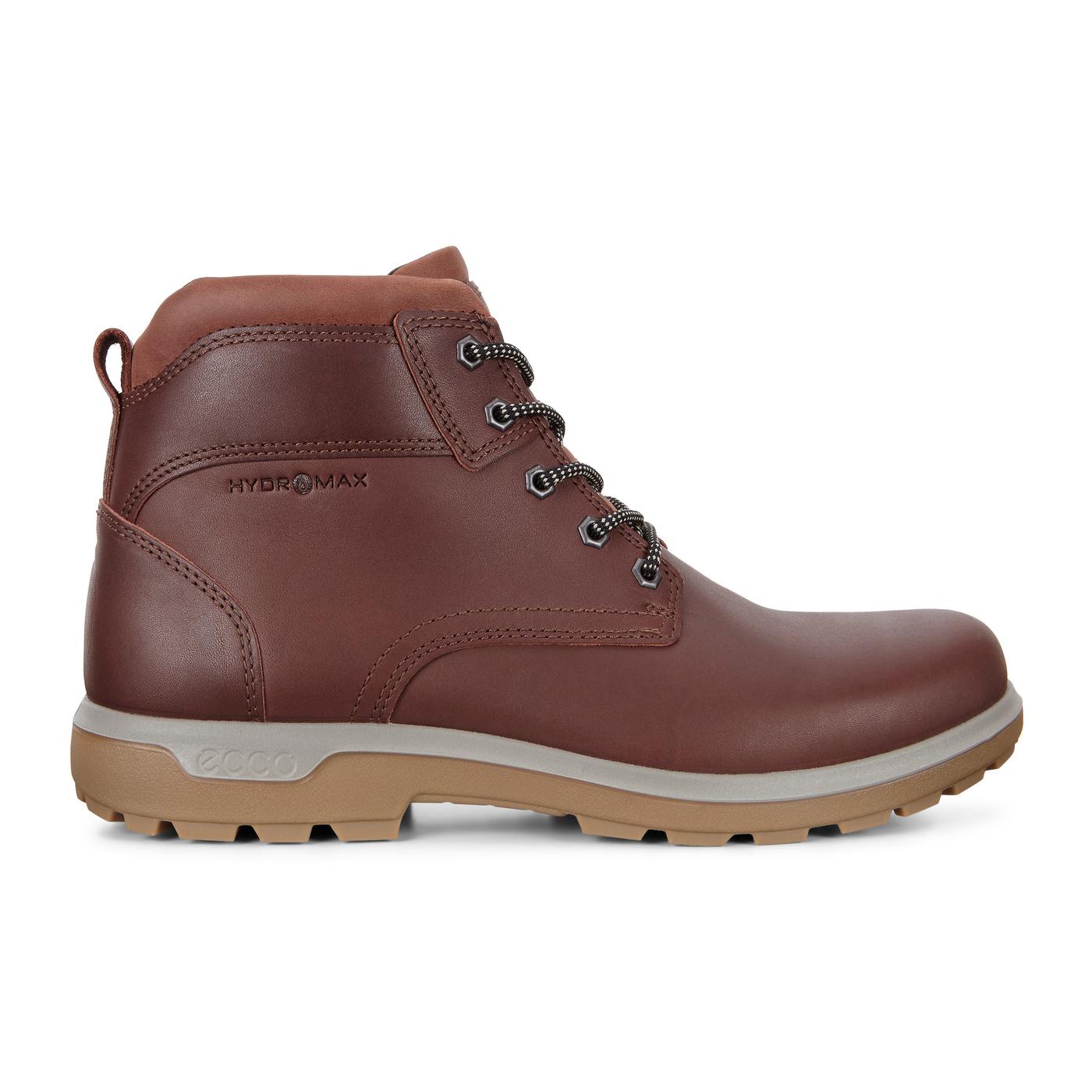 ECCO WHISTLER Outdoor Men's Boots