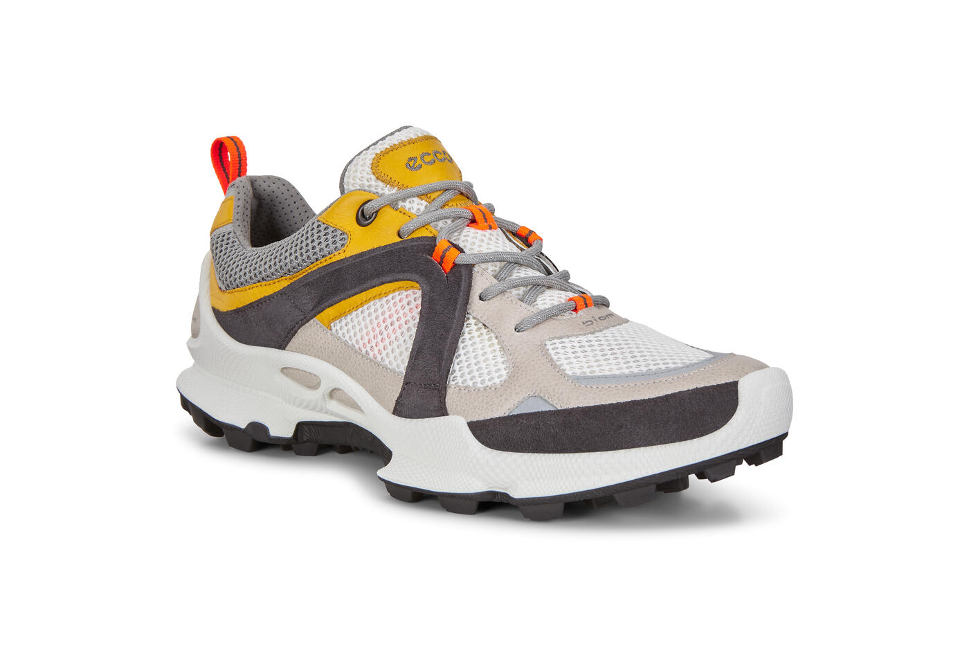 Chaussure ECCO Biom C-Trail basse pour hommes