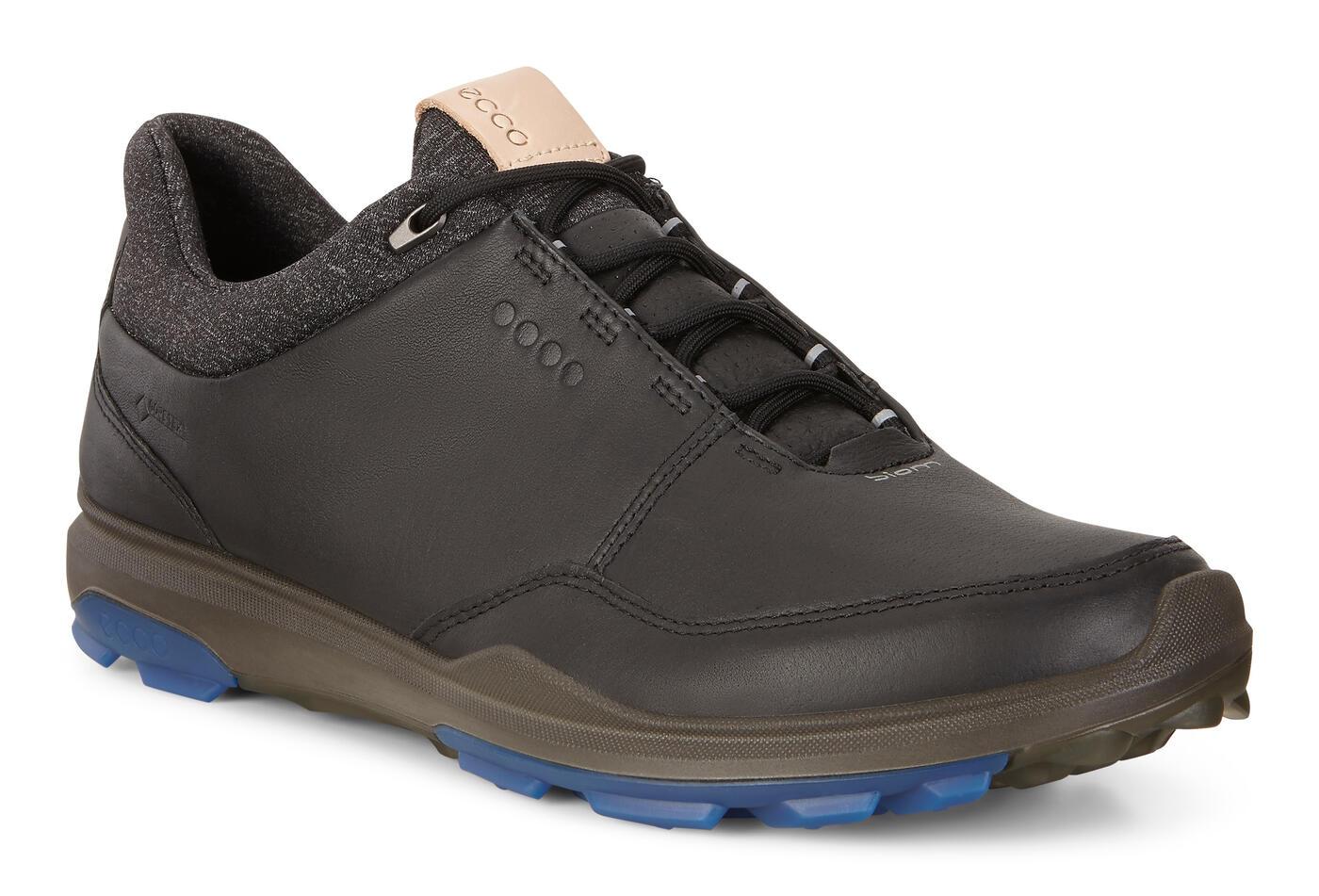 Chaussure ECCO BIOM HYBRID 3 GTX pour hommes