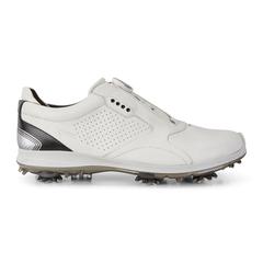 ECCO BIOM G 2 BOA GTX Men's Shoe