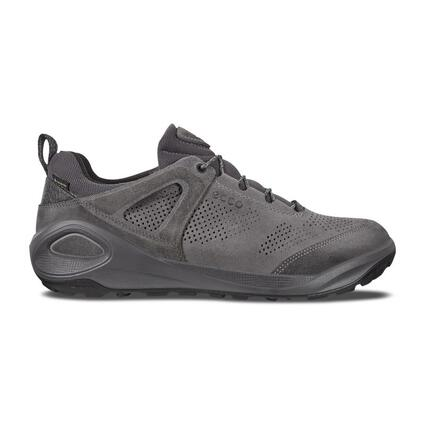 ECCO Biom 2Go Men's Low GTX Shoes