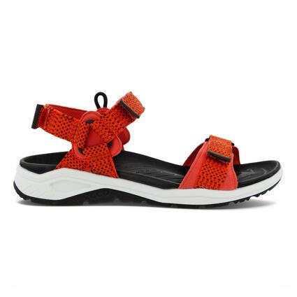 Sandales d'eau X-Trinsic 3S ECCO® hommes