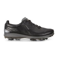 ECCO BIOM G 2 FREE GTX Men's Shoe